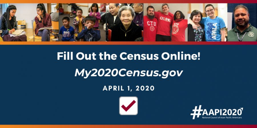 Census Ad 1 for article and website
